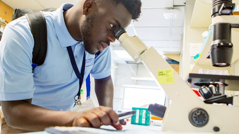 UNCF stem scholar male student looking through a microscope