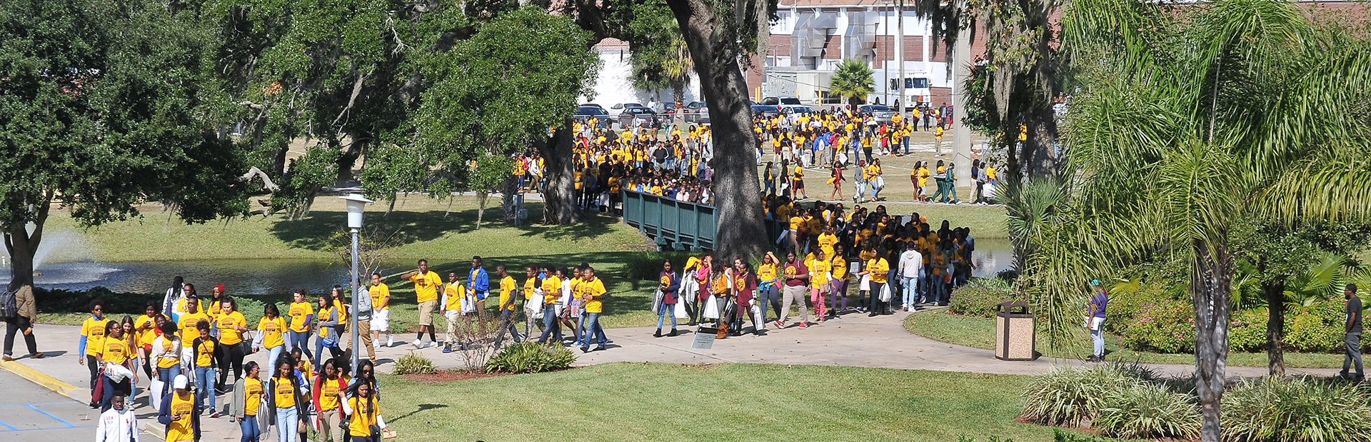 Aerial view of Bethune Cookman students on campus