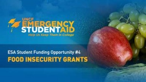 Banner ad for food insecurity grants
