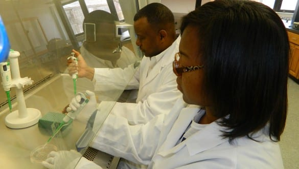 A professor and student working together in a laboratory