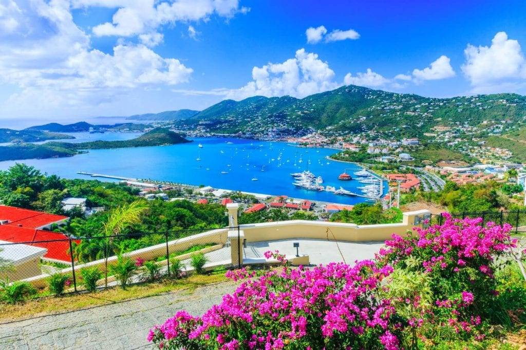 Blue water bay, tropical flowers, boats in an island cove